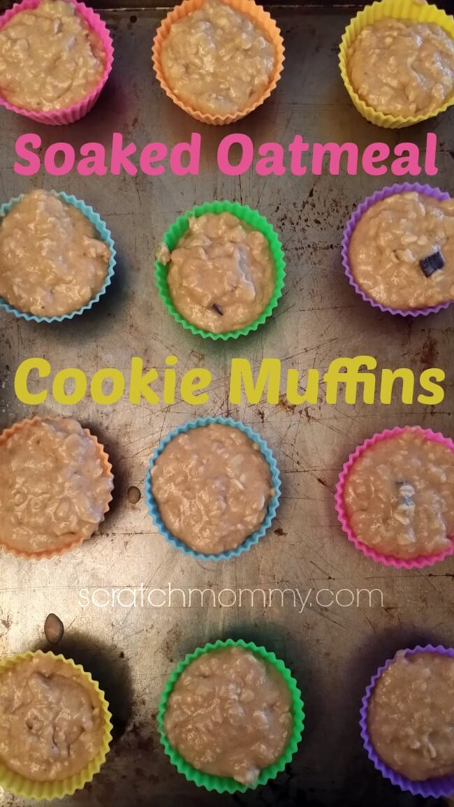 Soaked-Oatmeal-Cookie-Muffins