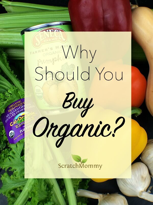 So, you're a mom with a budget... Why buy Organic? Is Organic really a label worth paying more for? Find where the organic industry is falling short & where we can give praises.