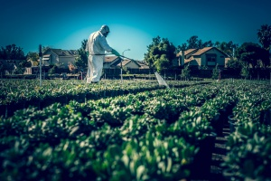 Farmer Spraying Herbicide In Suit