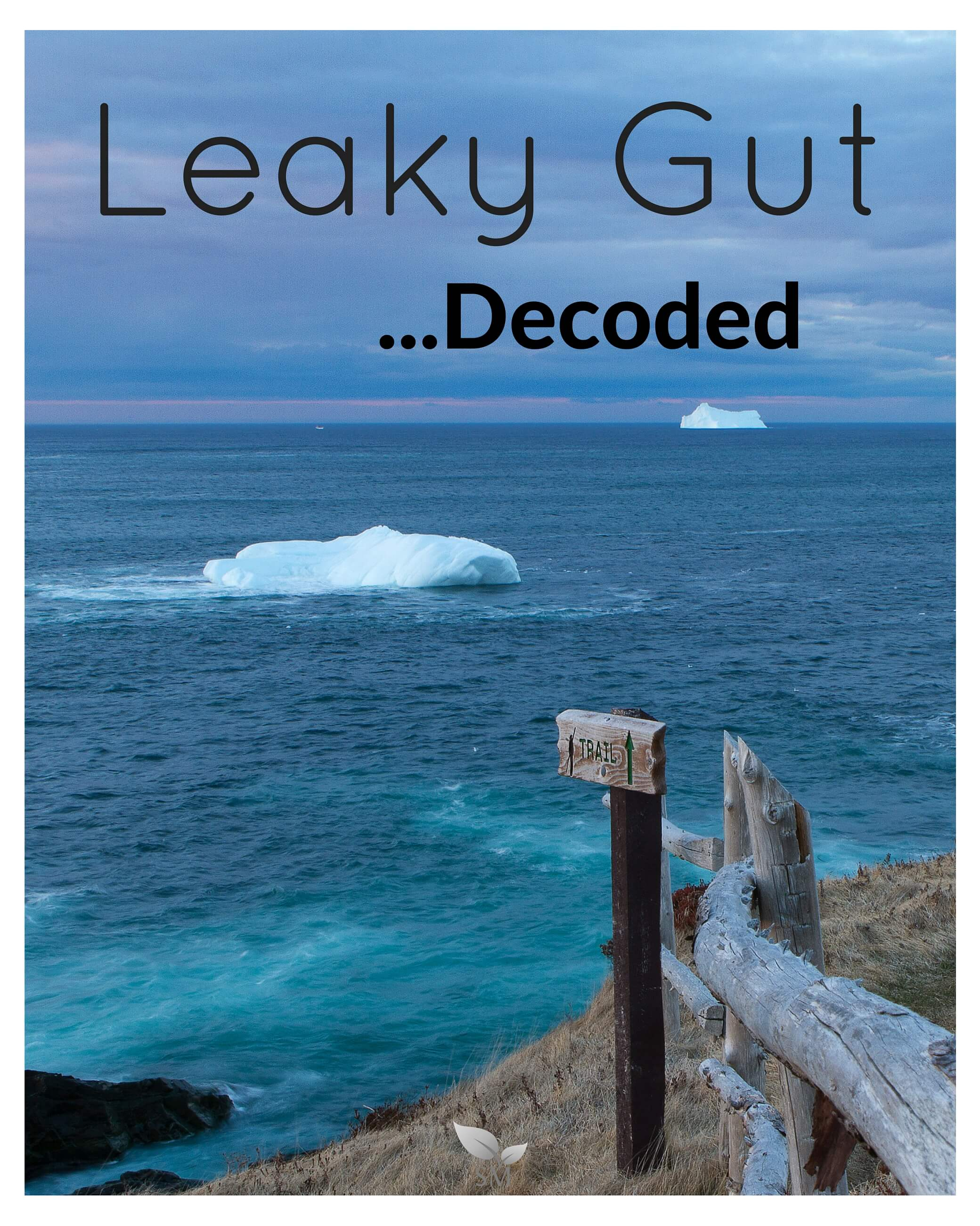 Leaky Gut Decoded - Scratch Mommy