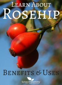 Come learn about rosehip benefits and uses (and why you need them in your life)!- Scratch Mommy