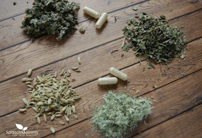 Check Out Our 9 Herbs That Benefit Breastfeeding - Scratch Mommy